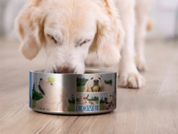 Sublimation 64oz/1900ml Stainless Steel Dog Bowl (Silver)